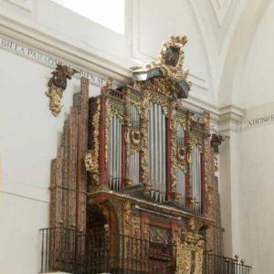 Iglesia Colegiata 9